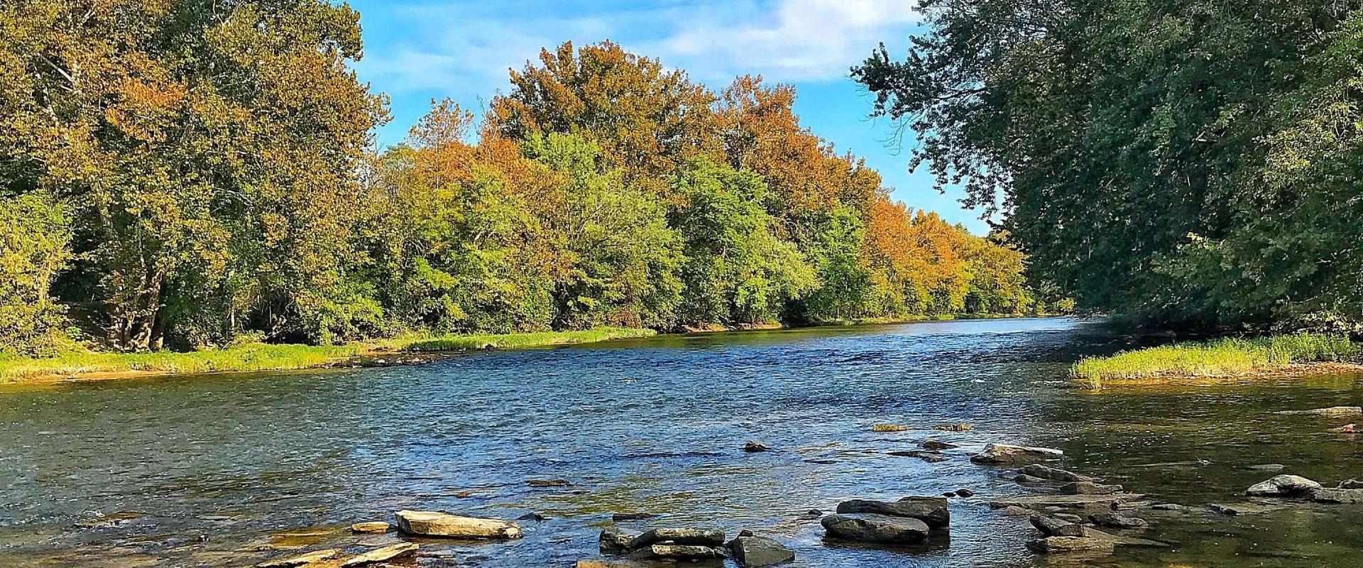 Ohio River Tributaries Riparian Habitat Restoration